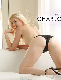 Charlotte Stokely is a beautiful flower