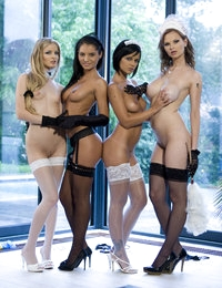 Four sexy maids with great asses ready to do their nasty job